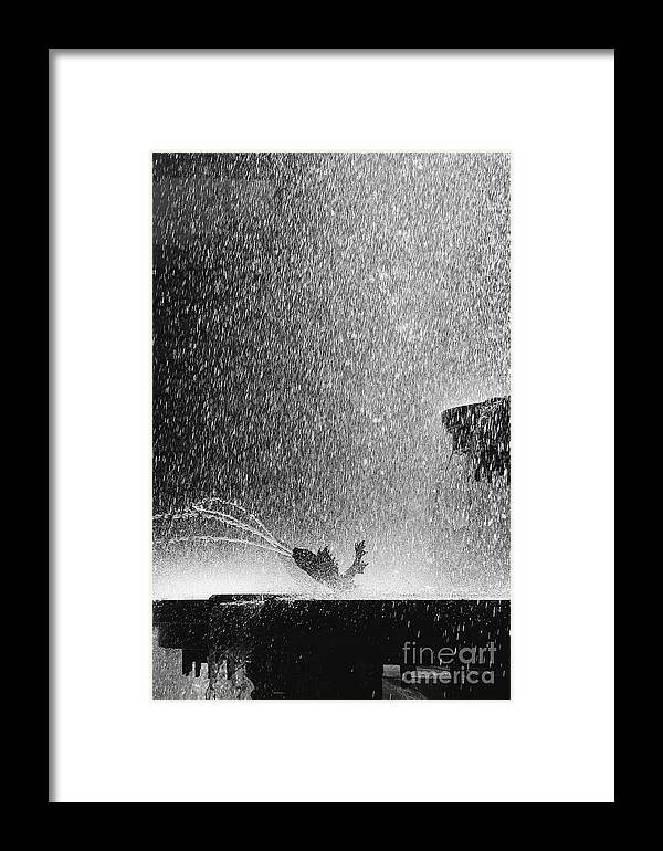 Summer Framed Print featuring the photograph Summer Rain by Hideaki Sakurai