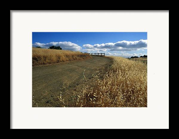 Landscape Framed Print featuring the photograph Summer Road by Kathy Yates