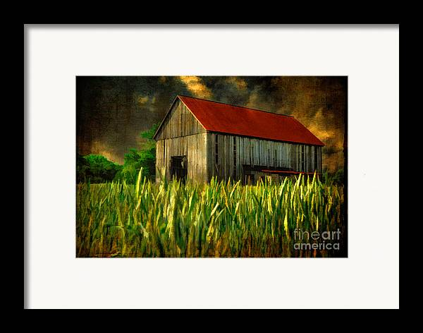 Architecture Framed Print featuring the photograph Summer Storm by Lois Bryan