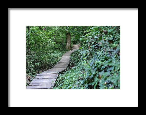 Rva Framed Print featuring the photograph Summer Trail Path by Doug Ash