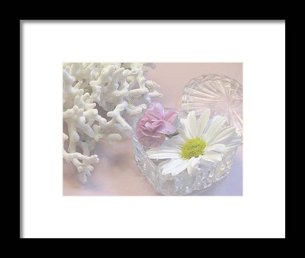 Coral Framed Print featuring the photograph Summer Treasures by Angela Davies