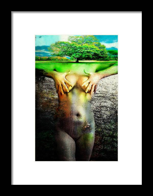 Framed Print featuring the photograph Summer by Zygmunt Kozimor