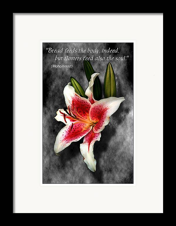 Quote Framed Print featuring the photograph Sun Gazer Lily Poster by Roger Soule