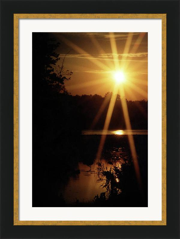 Sun Framed Print featuring the photograph Sun 35 by M Urbanski