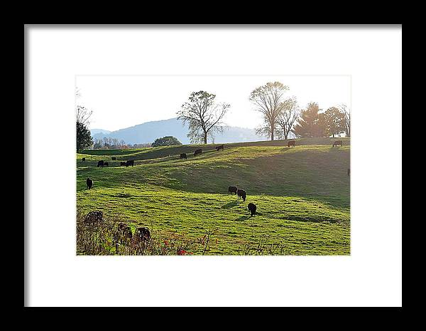 Landscapes Framed Print featuring the photograph Sun Shadows by Jan Amiss Photography