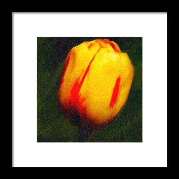 Tulip Framed Print featuring the digital art Sunburst Tulip by Lyle Huisken