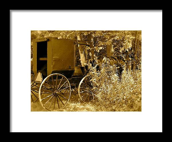 Amish Framed Print featuring the photograph Sunday Ride by Jennifer Addington