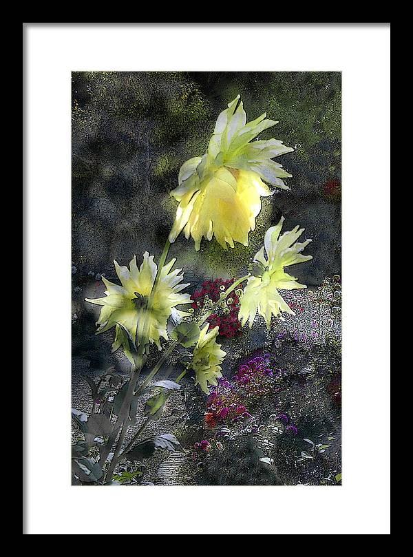 Sun Flower Framed Print featuring the digital art Sunflower Dream by Tom Romeo