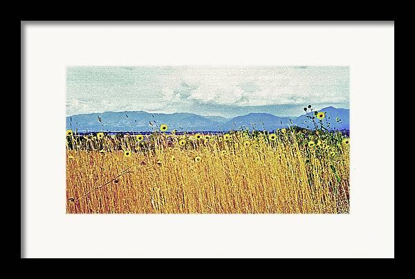 Fields Framed Print featuring the photograph Sunflower Field 2 by Steve Ohlsen
