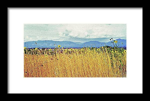 Fields Framed Print featuring the photograph Sunflower Field 2 by Steve Ohlsen