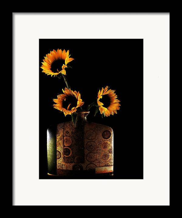 Sunflower Framed Print featuring the photograph Sunflower Galore by Lucian Badea