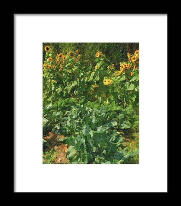 Sunflowers Framed Print featuring the photograph sunflower No.5 by Susan Crowell