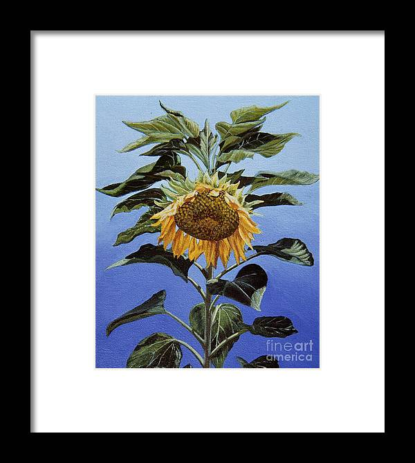 Sunflower Painting Framed Print featuring the painting Sunflower Nodding by Jiji Lee