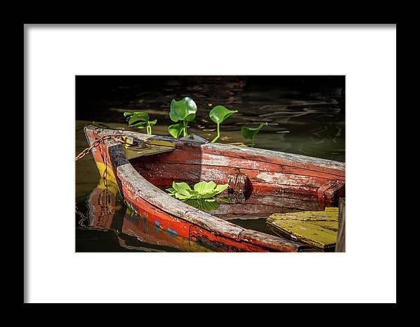 Boat Framed Print featuring the photograph Sunk by Sandy Chinski