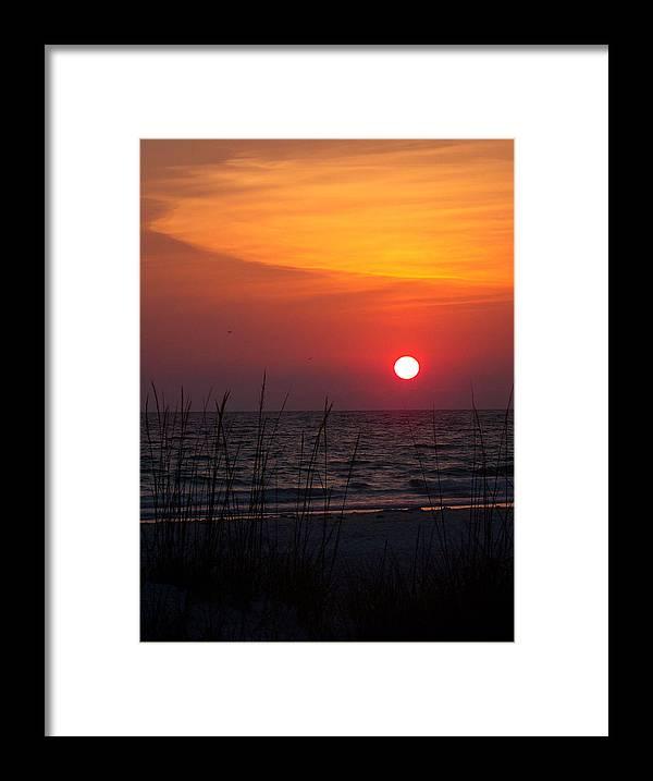 Sunset Framed Print featuring the photograph Sunlit Night by Amanda Vouglas