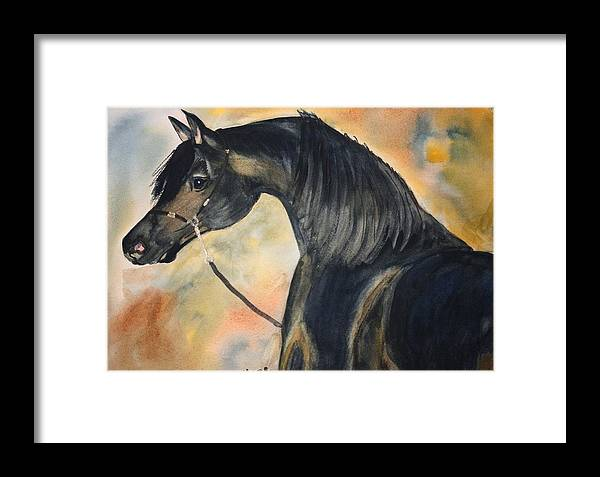 Horses Framed Print featuring the painting Sunlit Splendor by Michele Turney