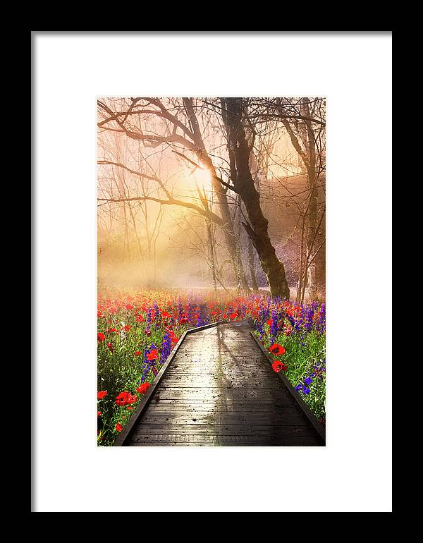 Appalachia Framed Print featuring the photograph Sunlit Wildflowers by Debra and Dave Vanderlaan