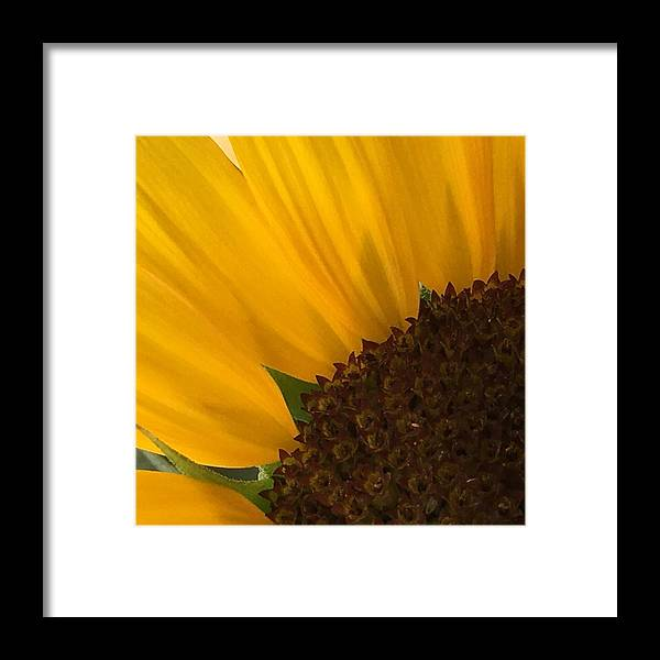 Landscape Framed Print featuring the photograph Sunny Days by Georgina Gomez-Lieberman