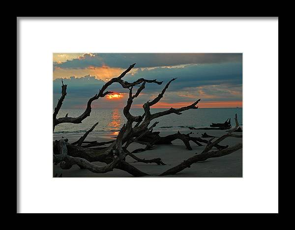 Driftwood Beach Framed Print featuring the photograph Sunrise At Driftwood Beach 2.2 by Bruce Gourley