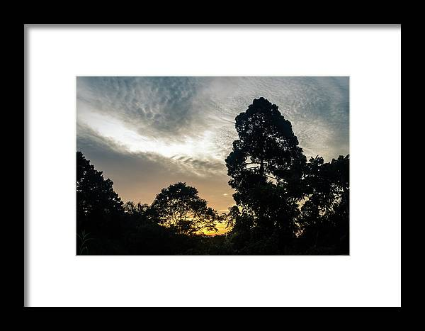 Borneo Framed Print featuring the photograph Sunrise Silhouettes by Richard Parsons