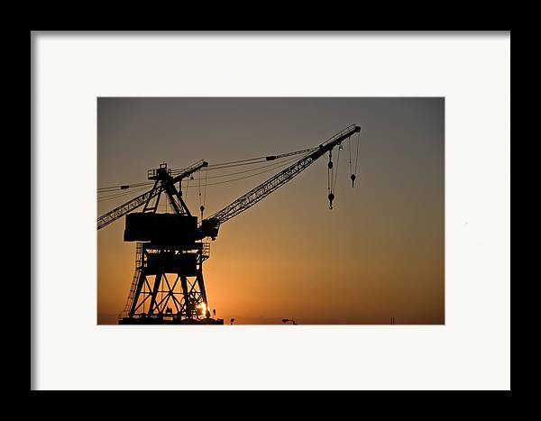 Crane Framed Print featuring the photograph Sunrise by Wes Shinn