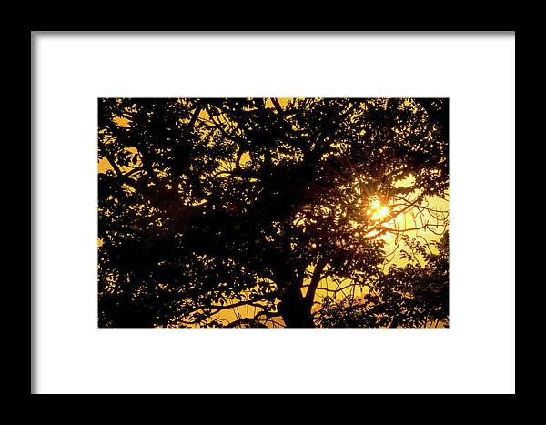 Sunset Framed Print featuring the photograph Sunset And Trees - San Salvador I by Totto Ponce