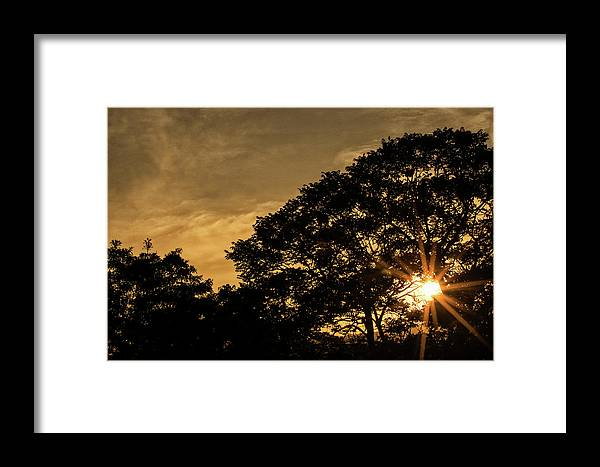 Sunset Framed Print featuring the photograph Sunset And Trees - San Salvador by Totto Ponce