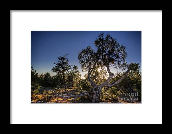 #grandcanyon Framed Print featuring the photograph Sunset At The Grand Canyon by Franz Zarda