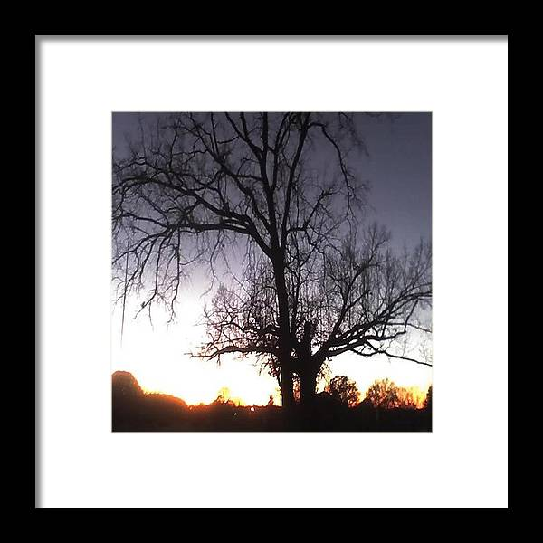 Sunset Framed Print featuring the photograph Sunset by Carla Fionnagain