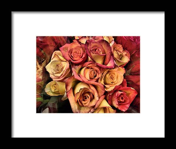 Rose Framed Print featuring the photograph Sunset Colored Roses by Deborah Weinhart