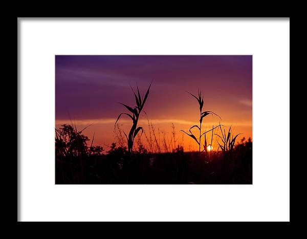 Sunset Framed Print featuring the photograph Sunset Colours by Nikos Stavrakas