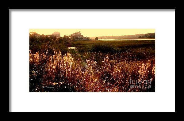 Marsh Framed Print featuring the photograph Sunset On The Marsh by Patricia L Davidson