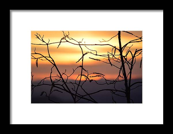 Sunset Framed Print featuring the photograph Sunset Silhouette by Karly Lark