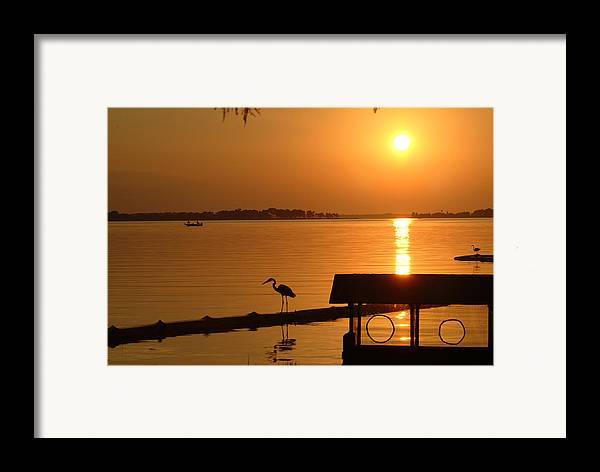 Sunset Framed Print featuring the photograph Sunsey On Lake Dora by Charles Ridgway