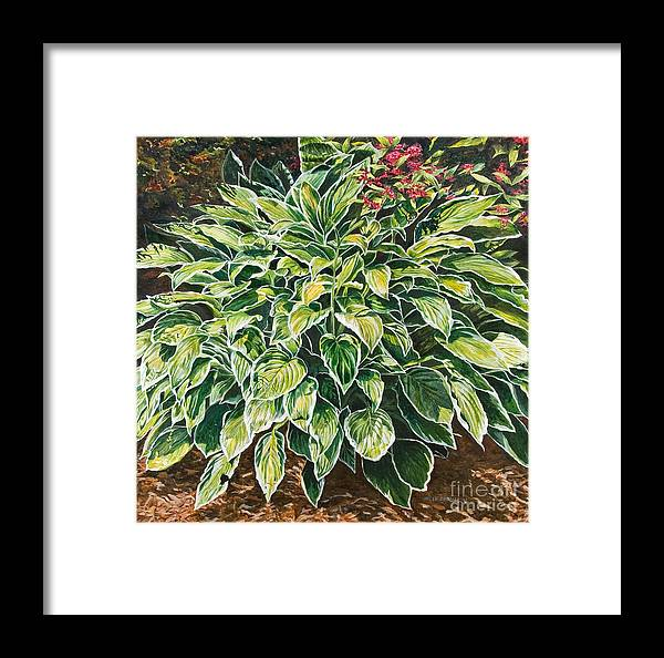 Hosta Framed Print featuring the painting Sunshine Shadows by Helen Shideler