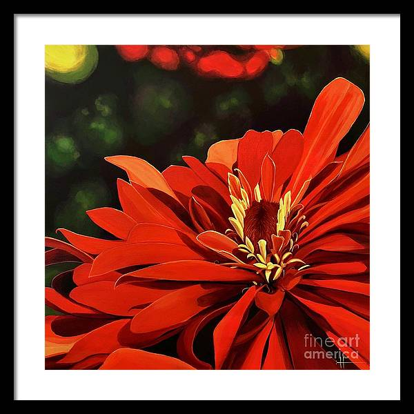 Zinnia Framed Print featuring the painting Sunshine's Daughter by Hunter Jay