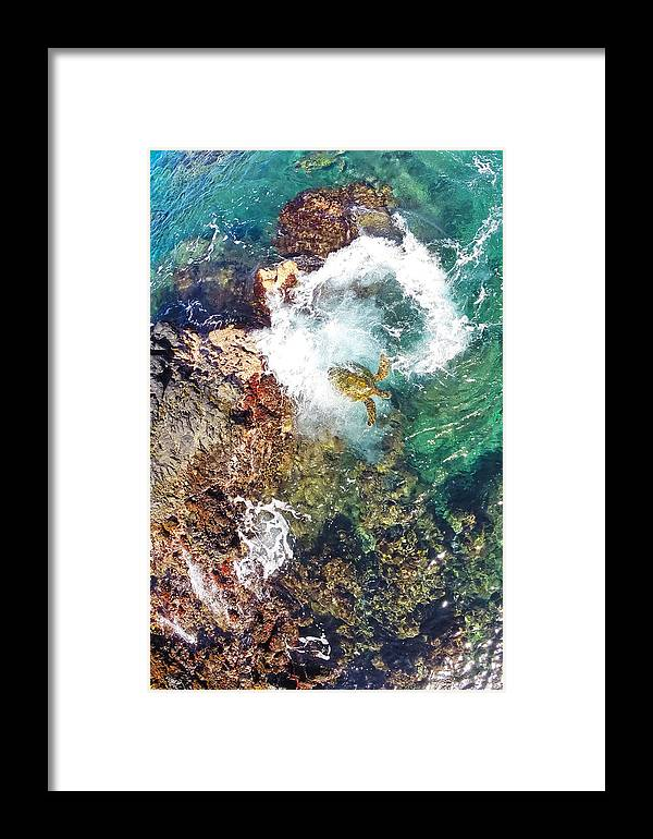 Maui Hawaii Sea Turtle Ocean Shoreline Reef Framed Print featuring the photograph Surfacing by James Roemmling