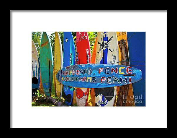 Surfboards Framed Print featuring the photograph Surfboard Fence-the Amazing Race by Jim Cazel