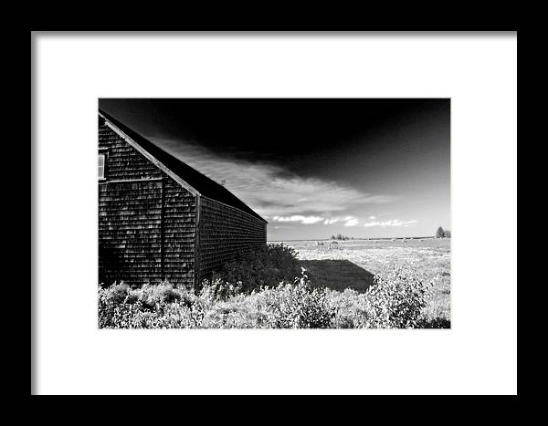 Ir Framed Print featuring the photograph Surreal Landscape by Levin Rodriguez