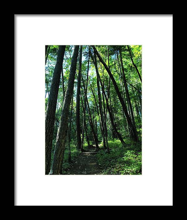 Green Framed Print featuring the photograph Susan Creek Indian Mound Trail by Teri Schuster