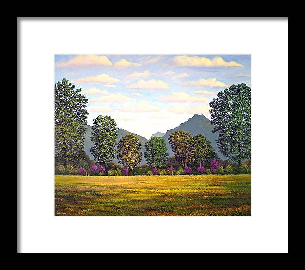 Mountains Framed Print featuring the painting Sutter Buttes In Springtime by Frank Wilson