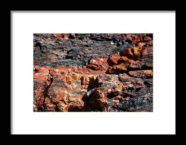 Photo Framed Print featuring the photograph Sw13 Southwest by James D Waller