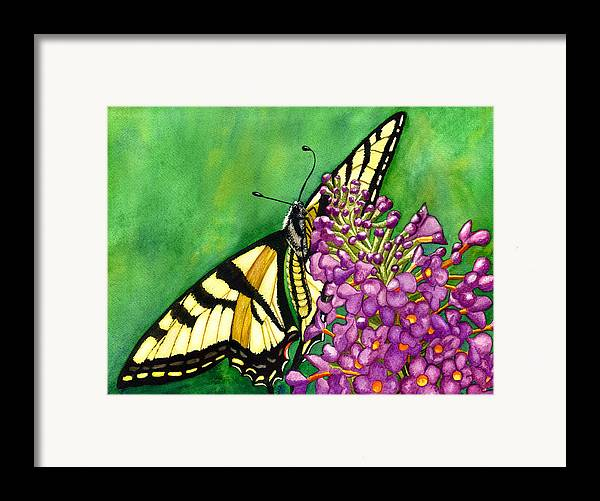 Butterfly Framed Print featuring the painting Swallowtail 1 by Catherine G McElroy