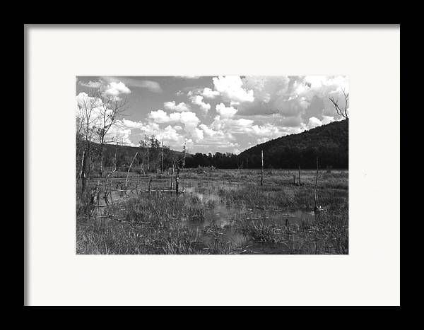 Ansel Adams Framed Print featuring the photograph swamp1-OEM by Curtis J Neeley Jr