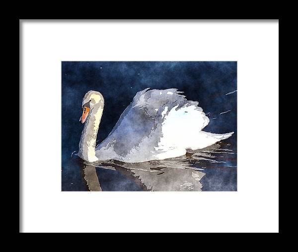 Swan Framed Print featuring the photograph Swan by David G Paul
