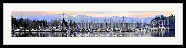 Landscape Framed Print featuring the photograph Swantown Marina Olympia Wa by Larry Keahey