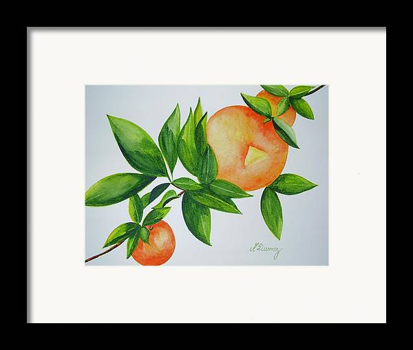 Fruits Framed Print featuring the painting Sweet by Murielle Hebert
