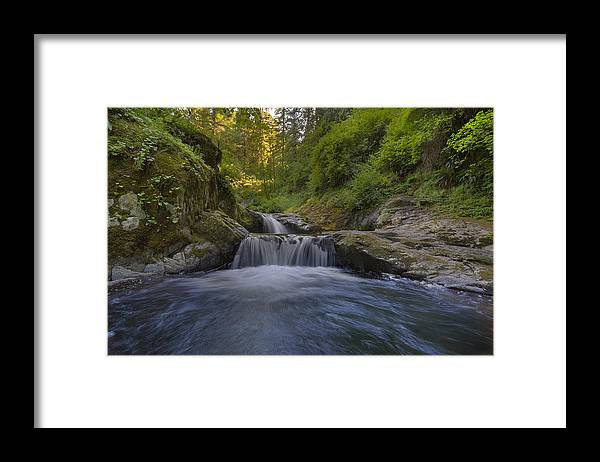 Sweet Creek Falls Trail Complex Framed Print featuring the photograph Sweet Little Waterfall by David Gn