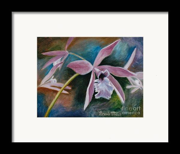 Flower Framed Print featuring the painting Sweet Orchid by Brenda Thour