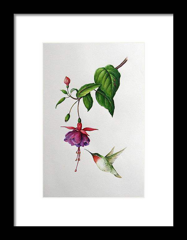 Birds Framed Print featuring the painting Sweet Spot by Margit Sampogna